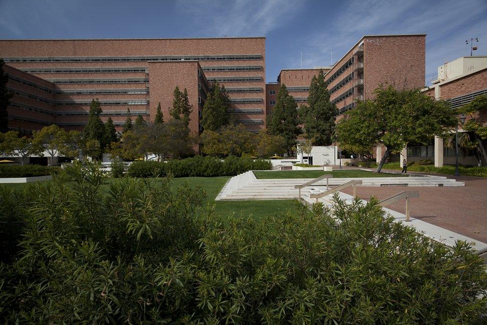 加州大学洛杉矶分校医学院